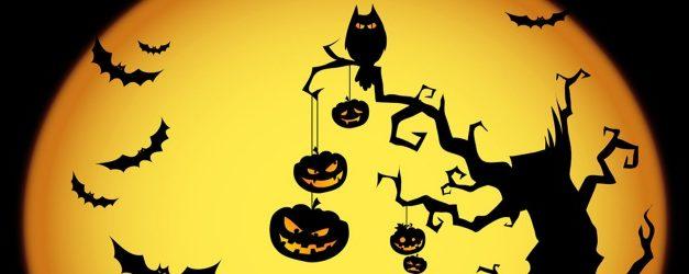 """""""In Halloween s'intrecciano business e occultismo"""""""